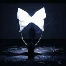 Butterfly con la compagnia Kinkaleri