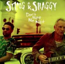 Sting, Shaggy