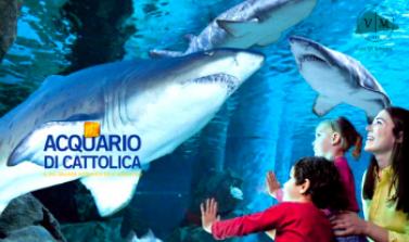Pacchetto Hotel + Acquario di Cattolica